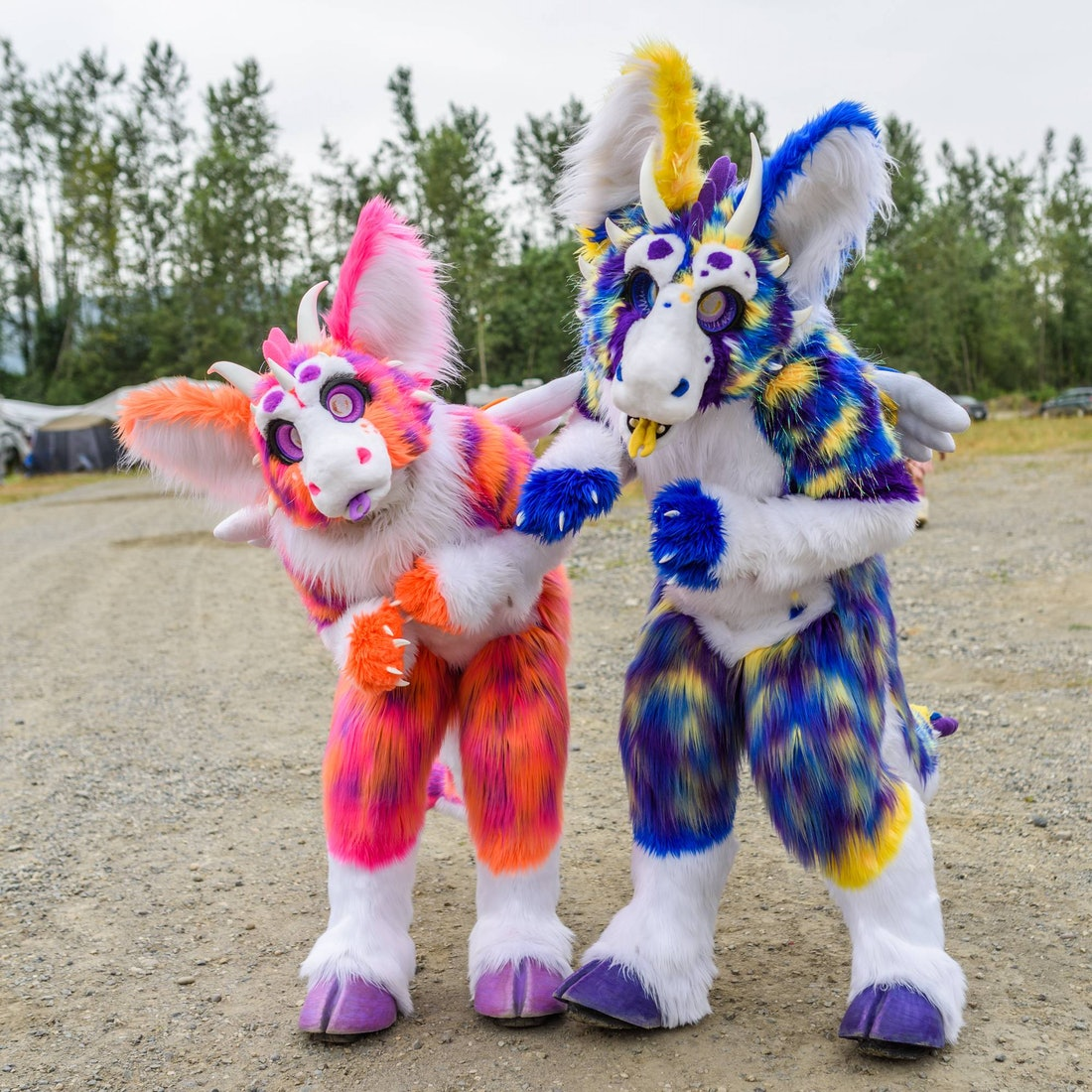 Animal Fur Porn away with the furries — shorthand social
